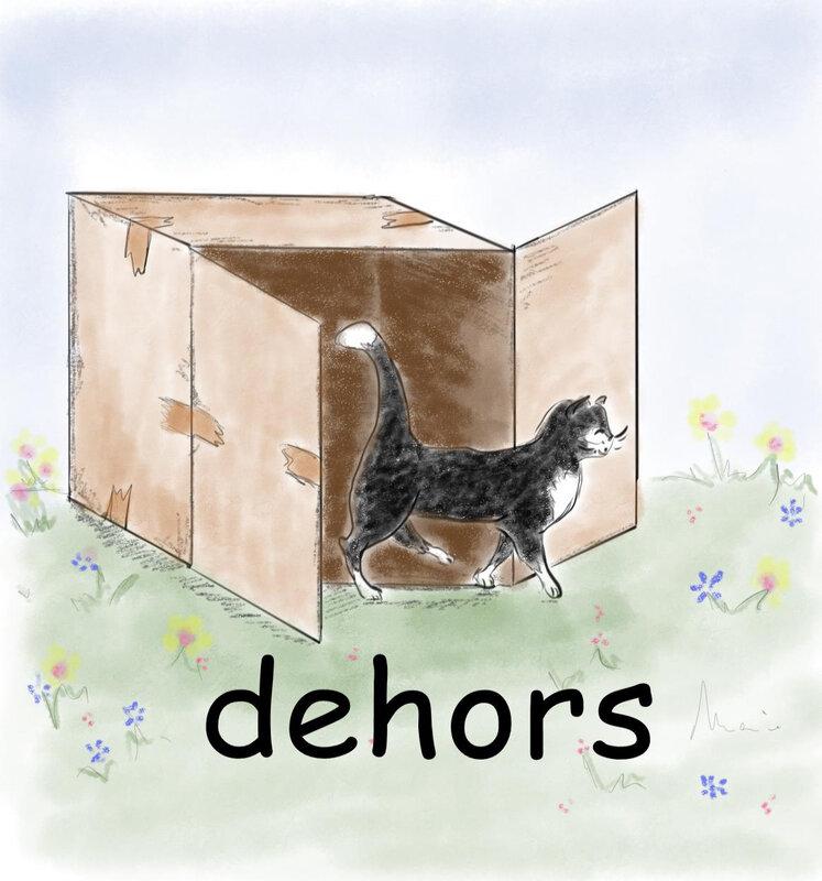 Un carton est dessiné, il est ouvert, un chat en sort. Le mot