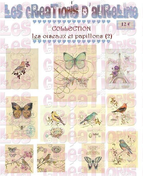pochette oiseaux et papillons 2
