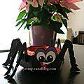 Grosse araignée - 02 b