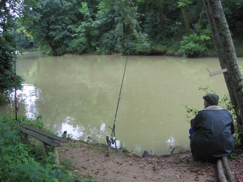 L anguille, c est bon, et c est marrant à pêcher - Club des ... dc2c52c8d063