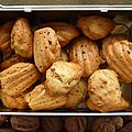 Madeleines aux coings et noix