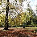 Je suis partie sous la pluie mais arrivée sous le soleil dans ce parc que j'adore.