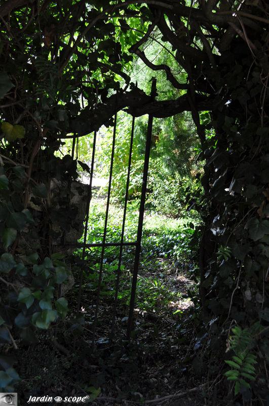 Que se cachent-il derrière ce vieux portail en fer ?