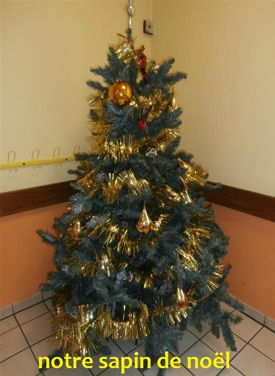 notre sapin 2014