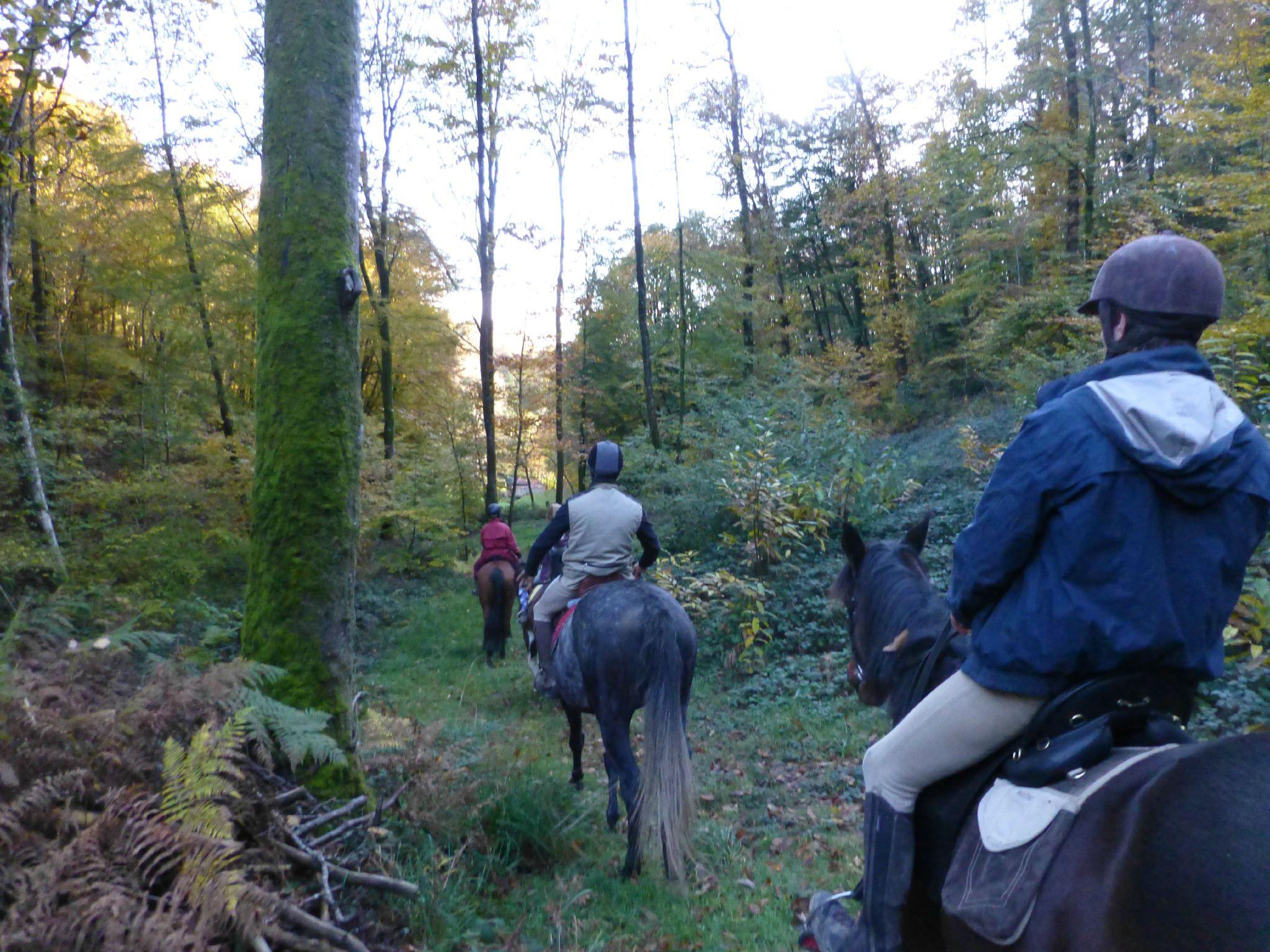 balade liberté - Mesnil Ozenne à cheval (26)