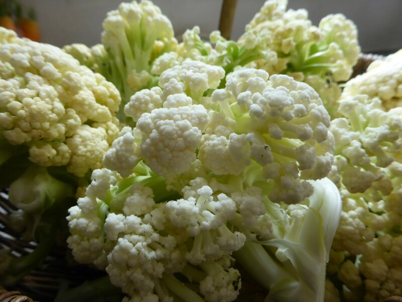 17-choux fleurs (4)