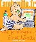 bfacile_20copie