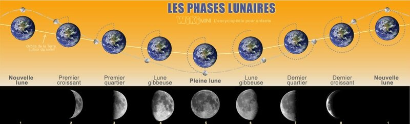 Paysagiste Pays Basque : Lune-phases-lunaires