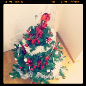 My_Christmas_Tree_2011__3_