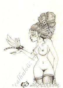 nymphe libellule