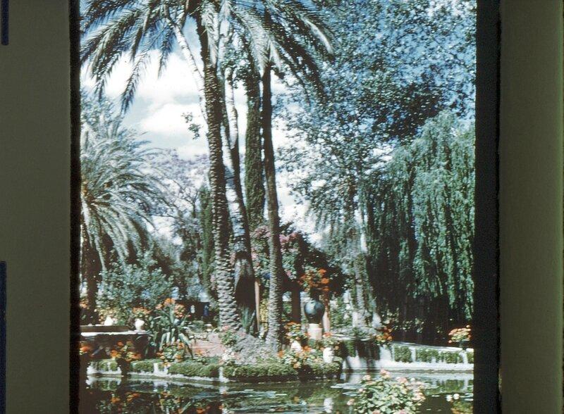 5-MRK,jardin Majorelle,1958