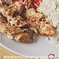..aiguillettes de poulet au lait de coco et gingembre (au bbq)..