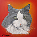 ♥ portraits de chats