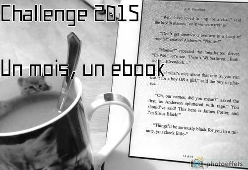 Challenge un mois, un ebook