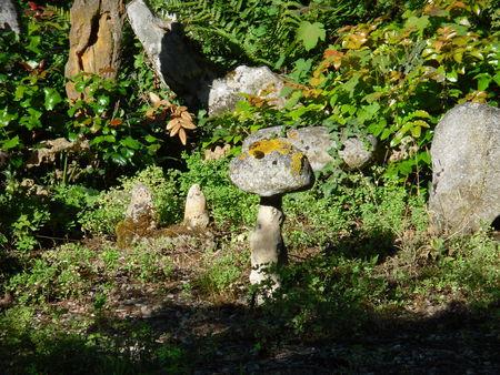 auxerre_jardin_vers_arboretum__1_