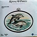 Kit les dauphins