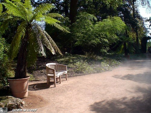 Petit banc dans le sentier des brumes au Parc floral Orléans