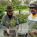 Apprendre les tables de multiplication grâce à l'arboriculture