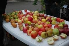 LES 30 ANS DE FRUITS ET NATURE EN REVERMONT (Marché des fruits d'Automne à Cuisiat)