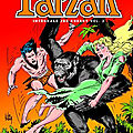 #tarzan par joe kubert, chef d'oeuvre d'adaptation, tome 2 !