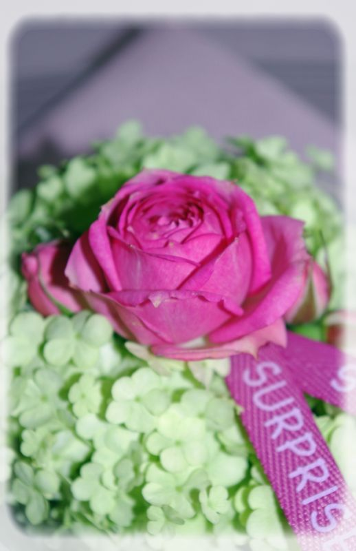 table_couleur_printemps_014_modifi__1