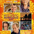 The best exotic marigold hotel - the indian palace