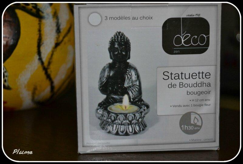 DSC_0005-001
