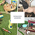 Passion figurines avec schleich