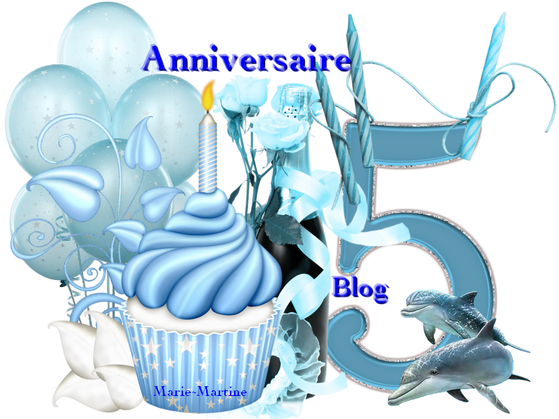 anniversaire blog 2