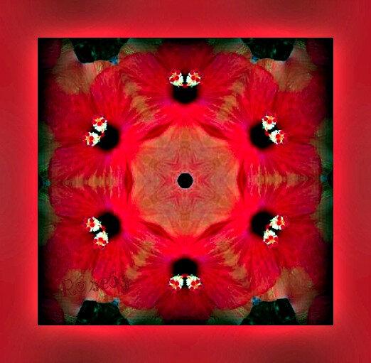 Merci René 3voici ma créa à partir de tes fleurs hihi