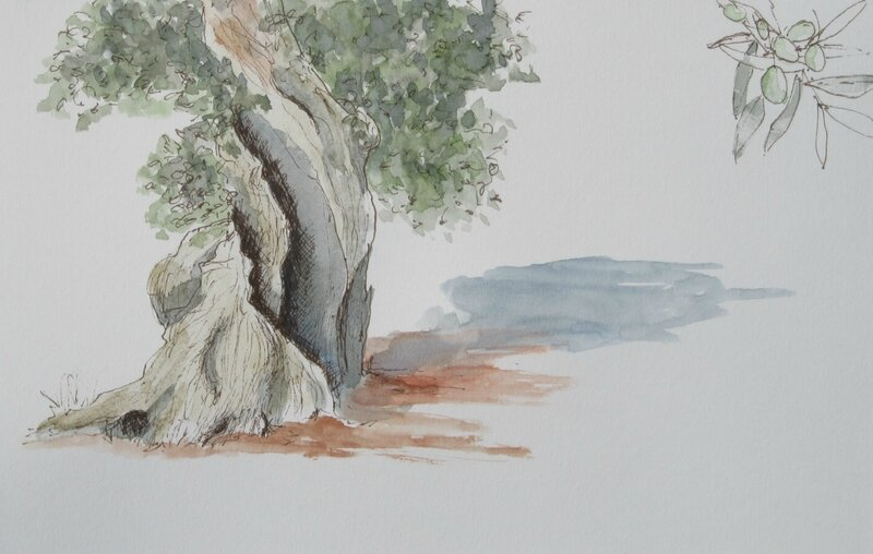 olivier-alberobello