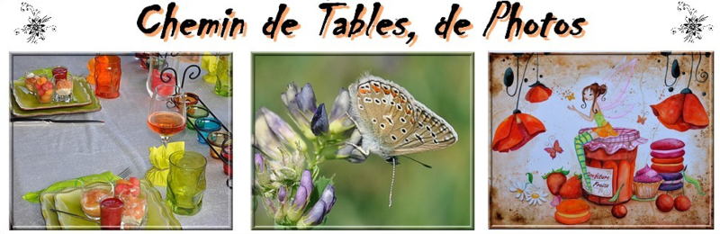 CHEMIN DE TABLES ET PHOTOS - CHEZ PATRICIA