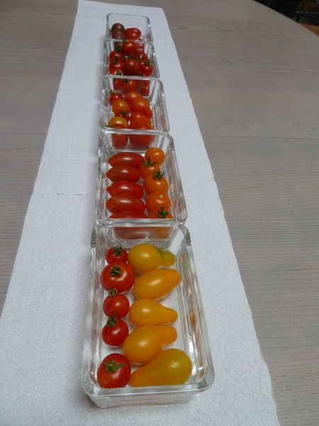 tomates cerises déco de table (6)