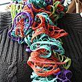 Echarpe multicolore 1