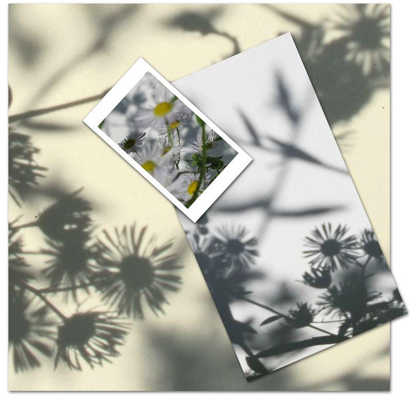 13-07-03, L'atelier des ombres (3)
