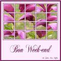 bon week end 16
