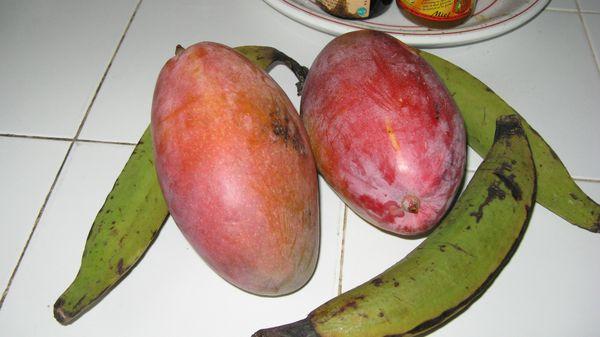 fruits du jardin (3)