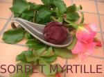 SORBET MIRTILLES