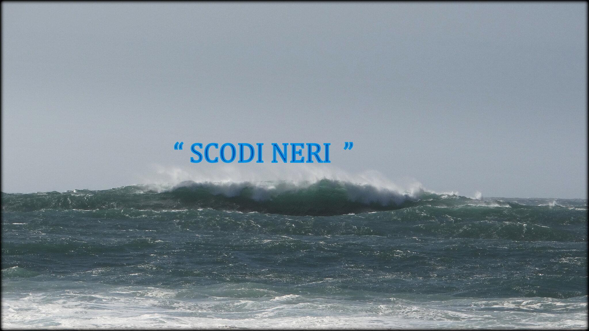 I_SCODI_NERI_ZEUS_