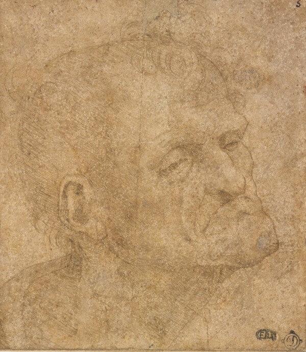 Léonard de Vinci, Tête de vieillard de trois quart, Pointe d'argent sur papier légèrement préparé ocre rosé