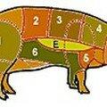 Porc_Cerdo
