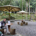 Alain dans le Jardin botanique de Bedugul