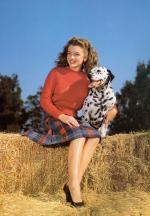 1945-model-farmer-red_sweater-010-1-by_potter_hueth-1