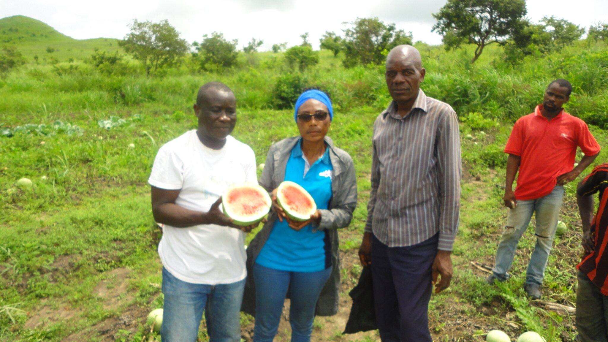 recherche des partenaires Financiers et aussi du matériel agricoles