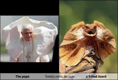 the_pope_totally_looks_like_a_frilled_lizard