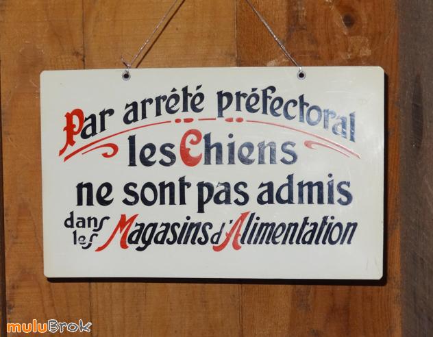 Pancarte-CHIENS-02