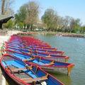 Vincennes en couleurs