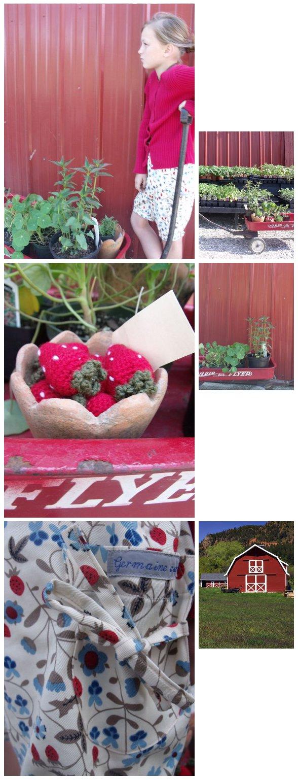 StrawberrySeason_reduc