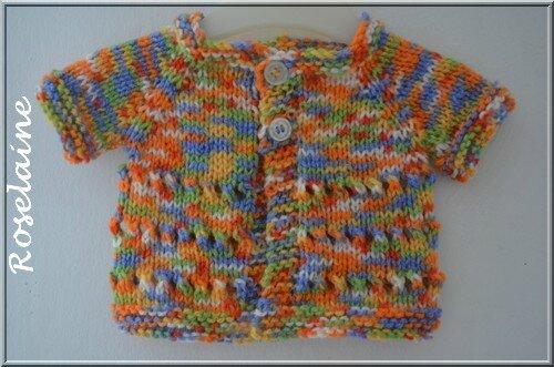 Roselaine 009 brassière ajourée tricot