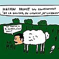 macron-mouton
